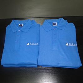 Поло рукавичка на замовлення друку зразка A3 принтер T-shirt WER-E2000T